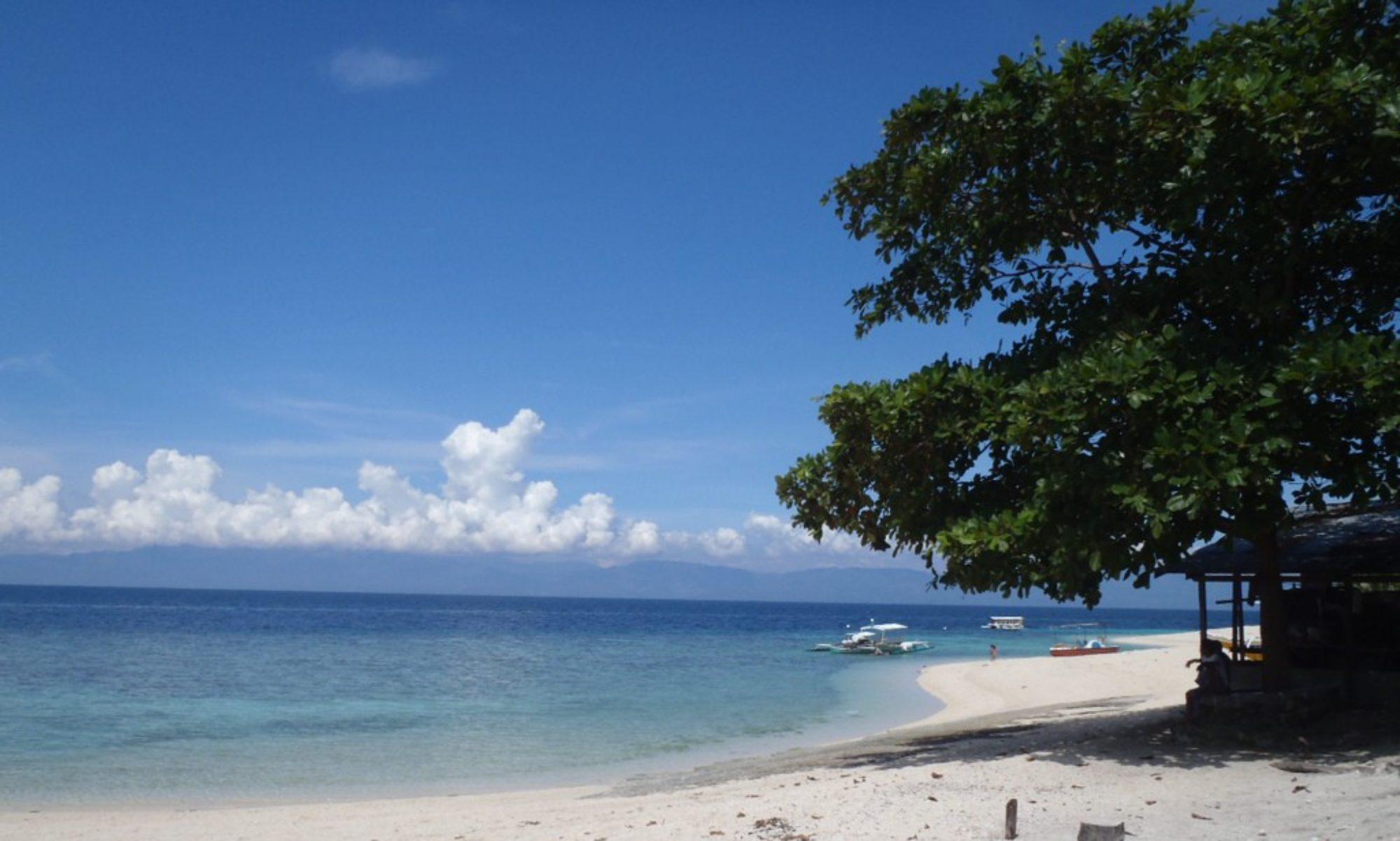 ハイナコ フィリピン!